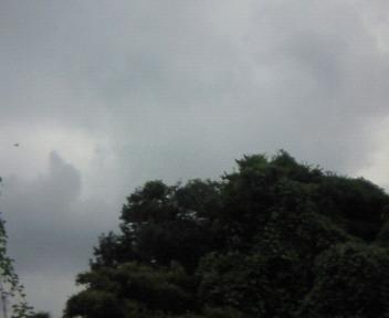 栃木県の空